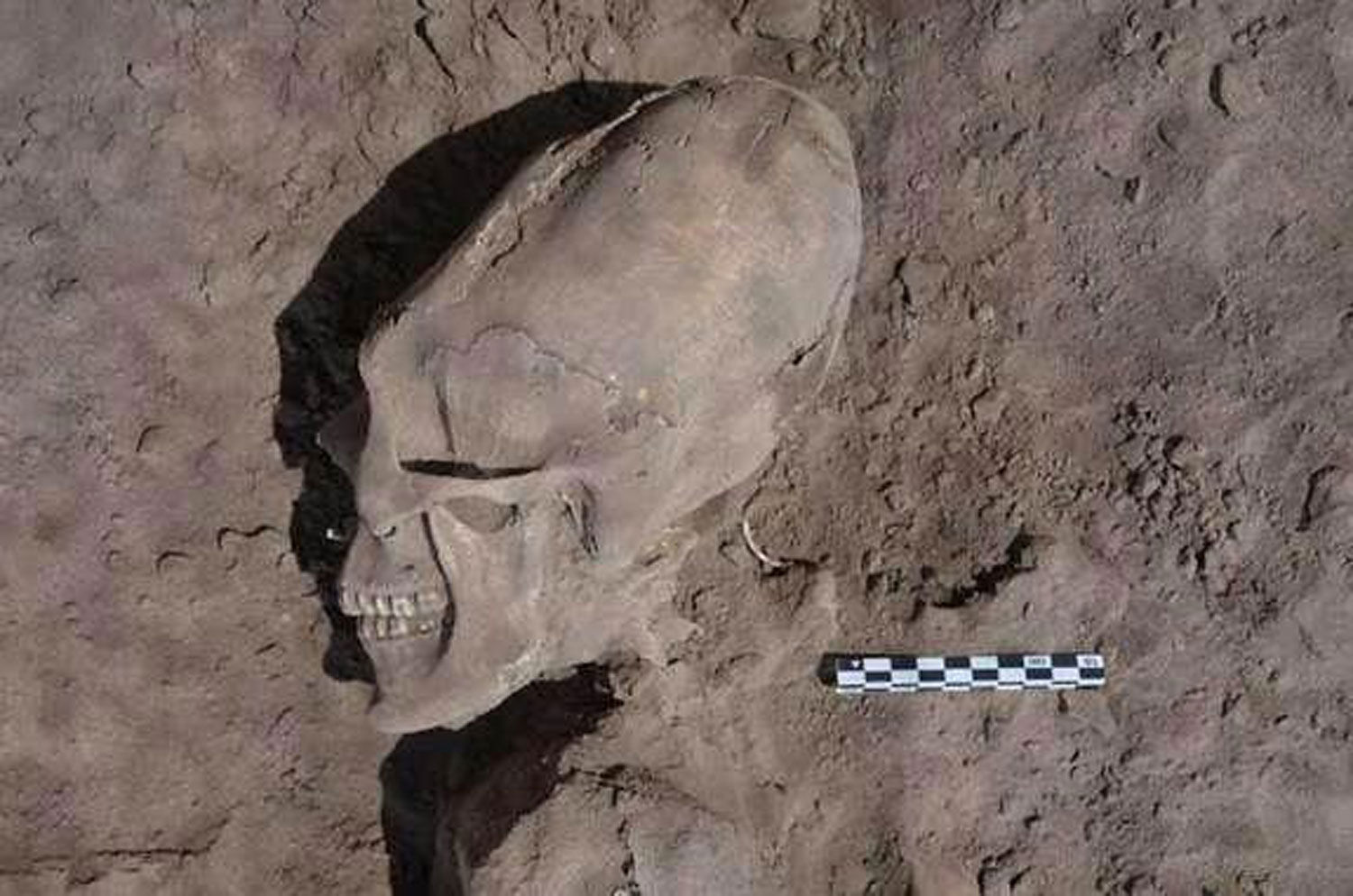 Alien skulls found at sonora mexico ancient burial site