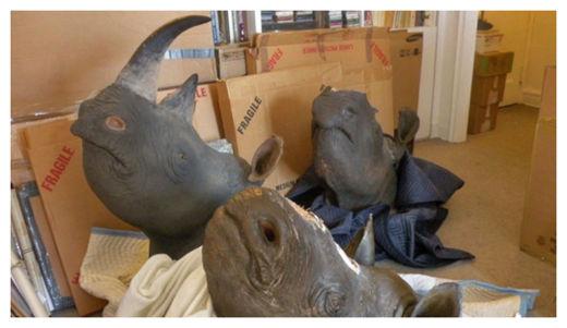 Horned Rhinos