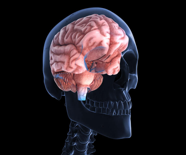 how scientist have used brain injuries and damage make discoveries about new brain functions