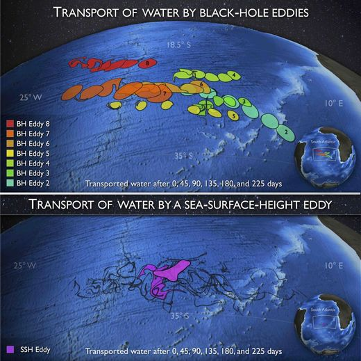 black-hole ocean eddies
