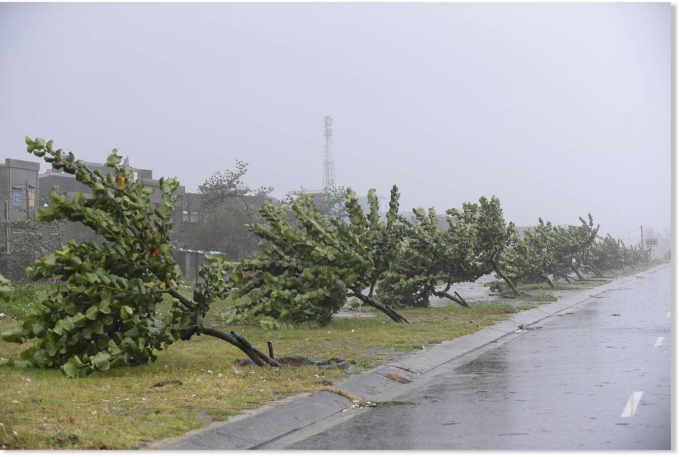 Тайфун во вьетнаме 3 фотография