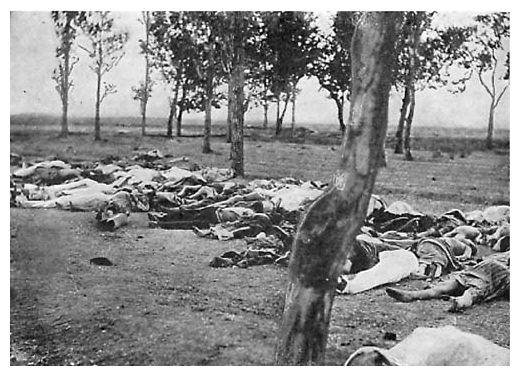 american holocaust one of the biggest genocide history essay First news of the holocaust american jewish community responds  one war refugee board operative, raoul wallenberg, technically a swedish diplomat in budapest, provided at least 20,000 jews.