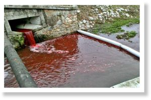 The river of blood: Slovakian waterway turns red overnight  Article_2517516_19CE247D000005