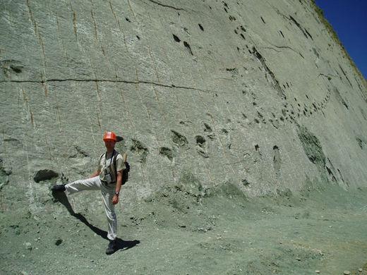 http://www.sott.net/image/image/s8/162937/large/cal_orko_wall_of_dinosaur_foot.jpg