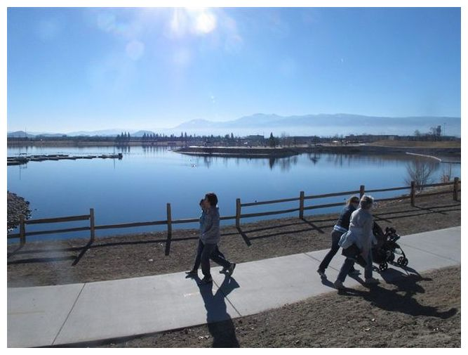 100 000 fish die in northern nevada marina after for Sparks marina fishing