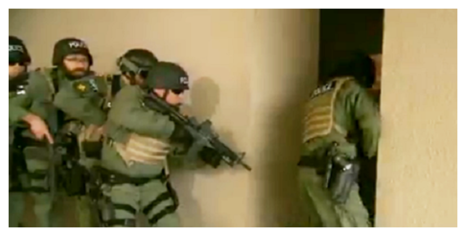 DHS Agents