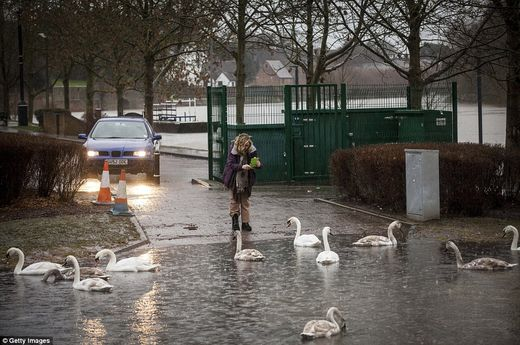 'If you buy a house on a flood plain you know the risks ...