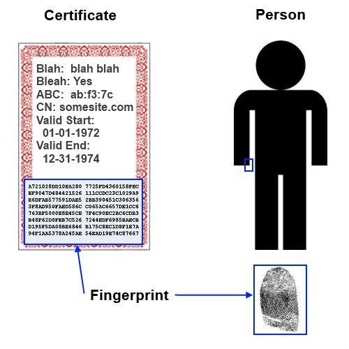Hash Fingerprint