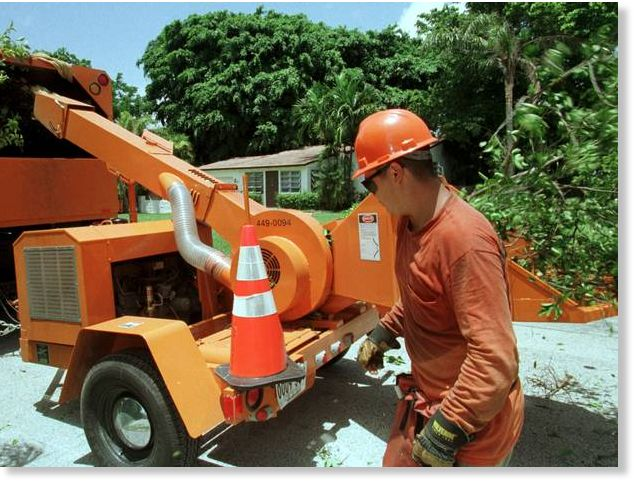 Florida man killed in gruesome wood chipper accident ...