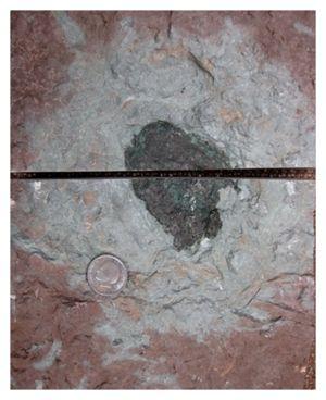 New Meteorite