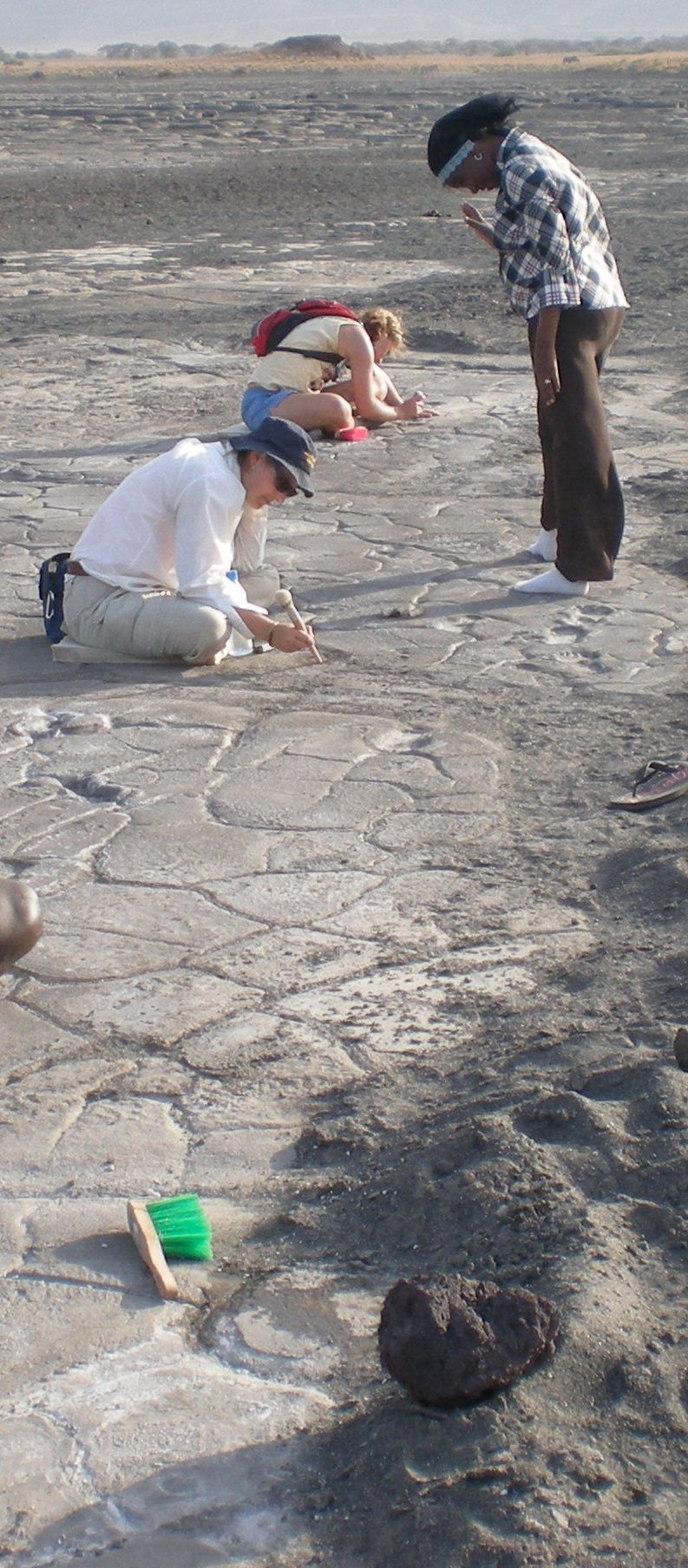 Appalachian geologist investigates Homo sapiens' oldest known trackways