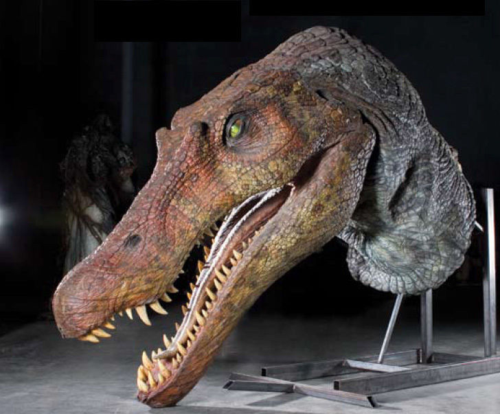 Spinosaurus: Giant swimming dinosaur fossil unearthed ...