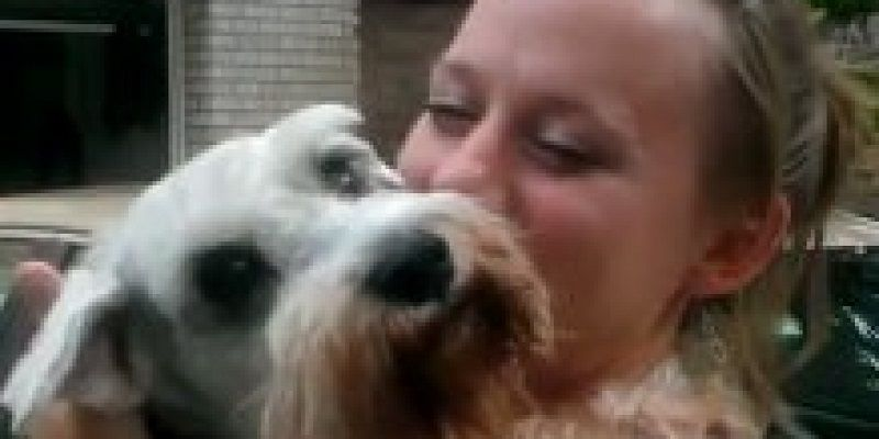 Ecstatic Dog Passes Out From Overwhelming Joy When Girl Returns - Dog passes owner returns 2 years