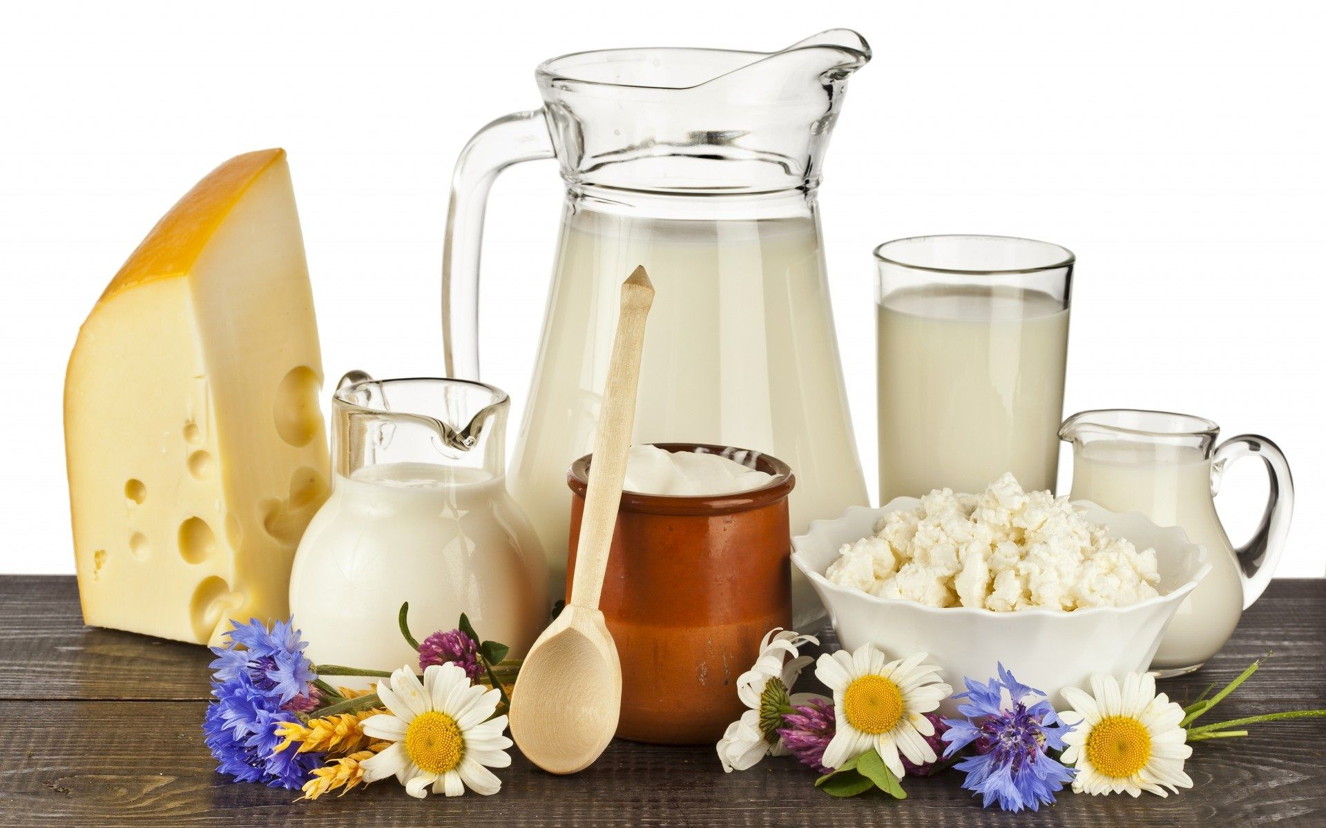 topics animal products dairy