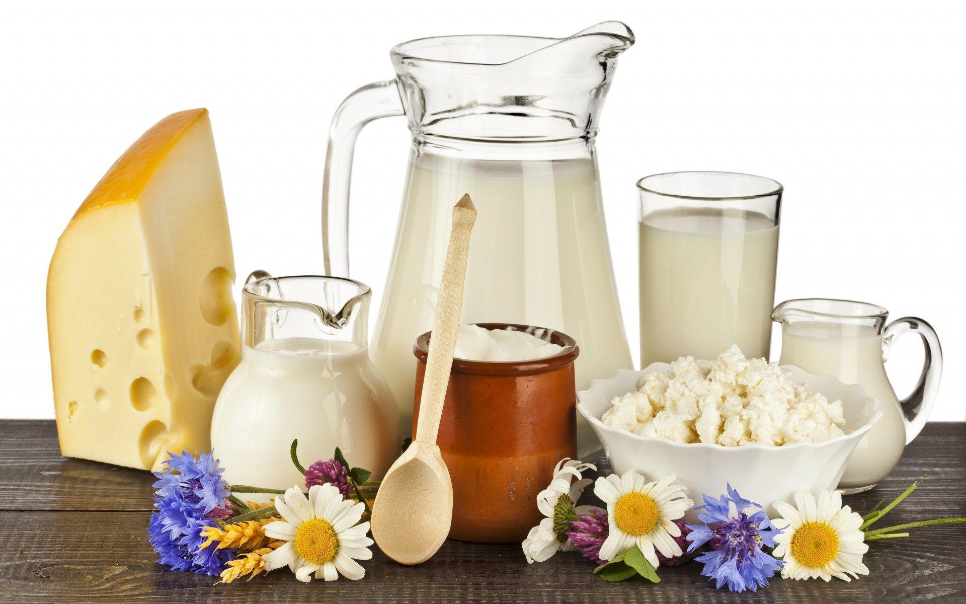 نتيجة بحث الصور عن dairy products