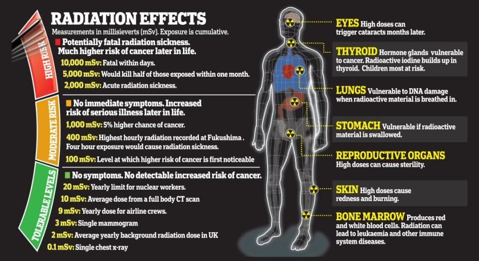 Is radiation good for you? The US Nuclear Regulatory ...