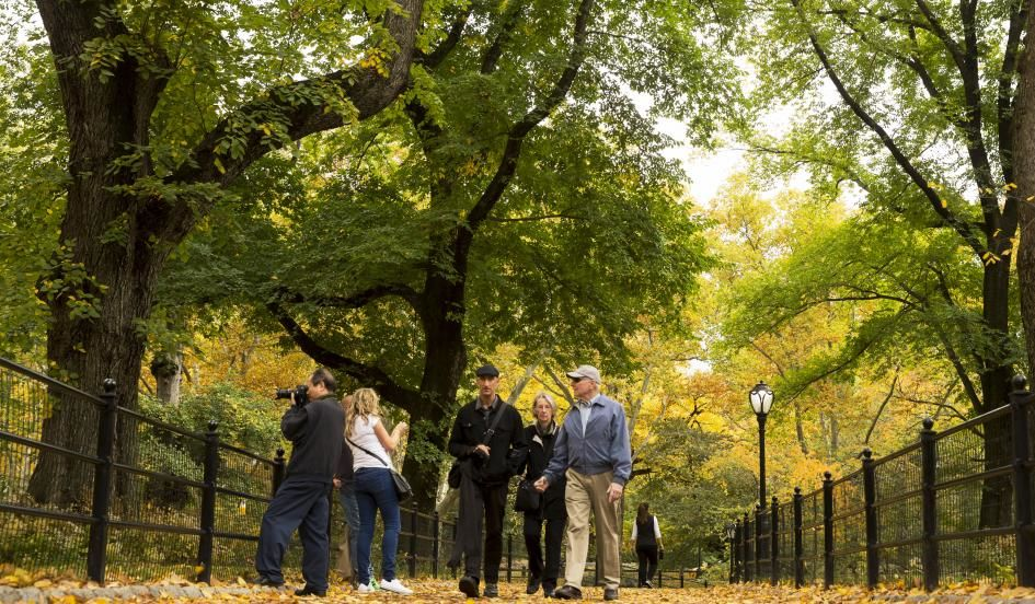 Can Spending Time In Nature Improve >> Spending Time In Nature May Improve Social Cohesion Reduce Crime