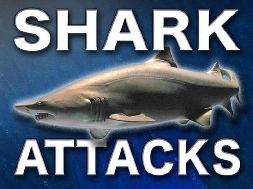 3 shark attacks at the same Florida beach within 24 hours