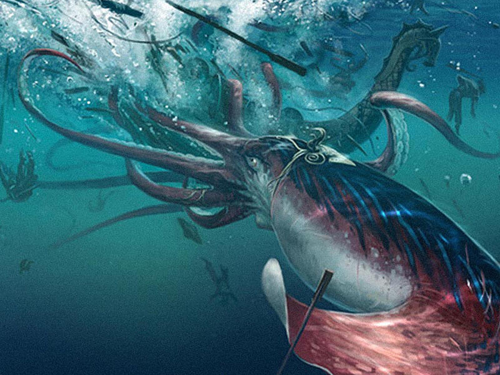 The Giant Squid Origin Of Mythical Monster Kraken Secret