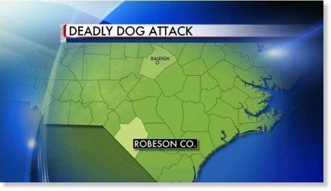 7 Year Old Boy Killed By Dog In Robeson County North Carolina