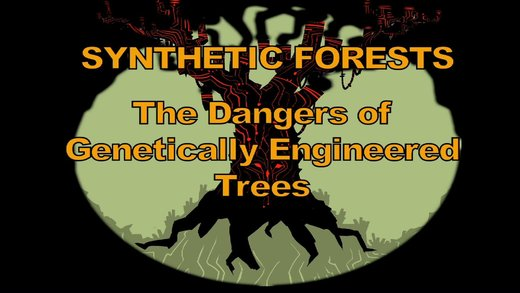 synthetic forests