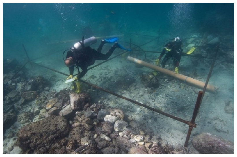Archaeologists Discover 1503 Shipwreck From Vasco da Gama's Fleet