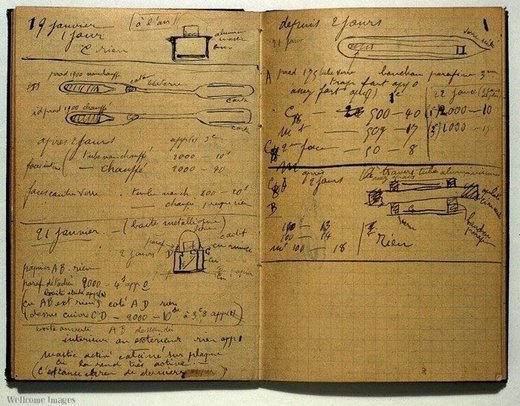 Madame Curie notebook