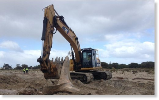 A 12m whale carcass is removed from Geographe Bay in Busselton.