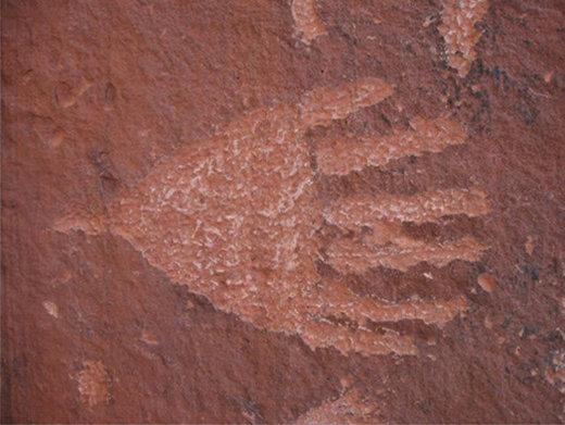 six toed footprint