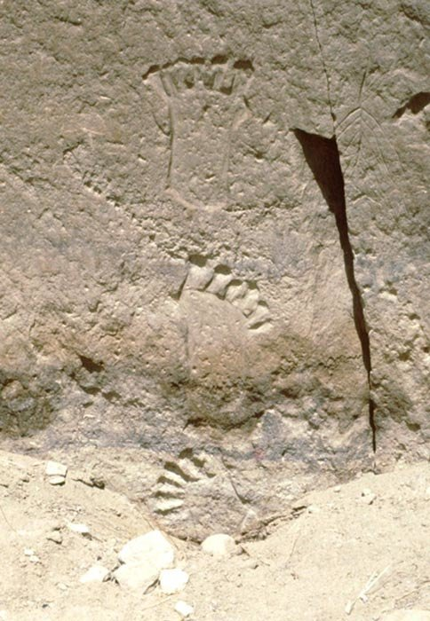 6-toed footprints
