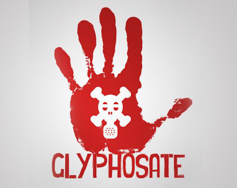 the ubiquitous presence of glyphosate now found in vaccines