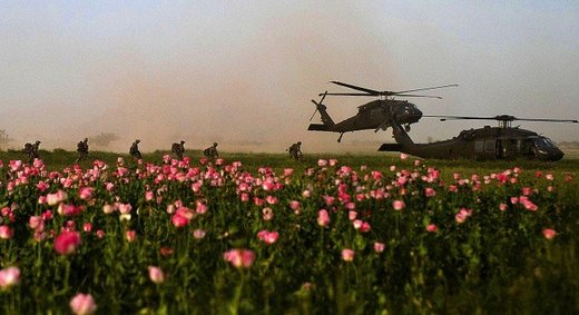 Production of drugs in Afghanistan 35-folded after US invasion, according to official