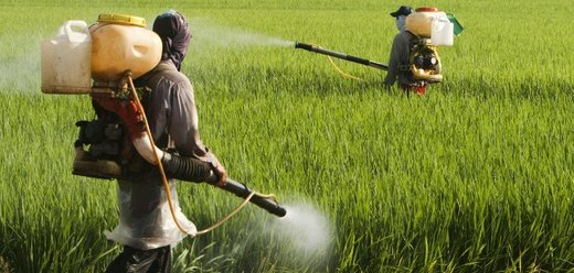 Damning new report shows the entire global ecosystem contaminated by glyphosate