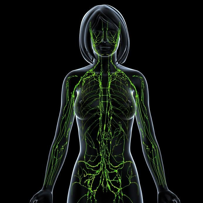 Strategies To Detoxify Heal The Lymphatic System Health