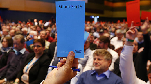 AfD party members