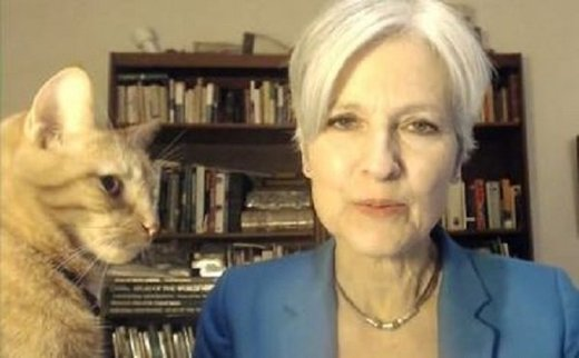 More bad news for Jill Stein: Pennsylvania judge blocks recount petitions