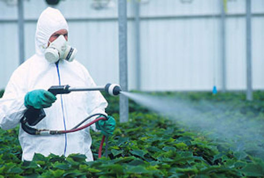 Unappetizing assessment of the U.S. food supply: 85% of the food has pesticide residues