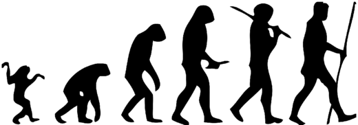 human evolution picture