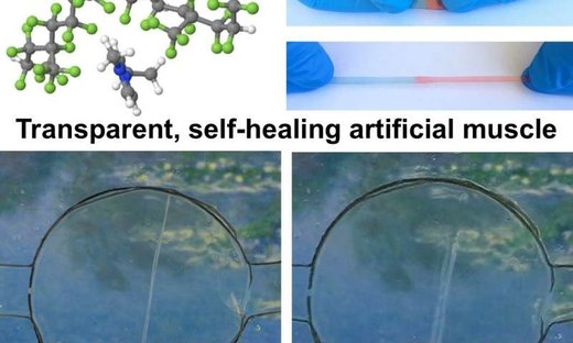 self healing artificial muscle