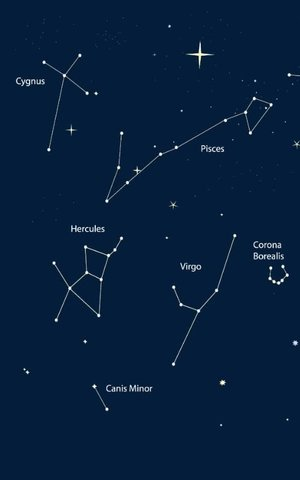 The star will appear in the constellation Cygnus, also know as the Northern Cross
