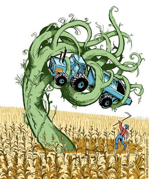 US Farmers are losing the Superweed fight: Glyphosate Resistance ...