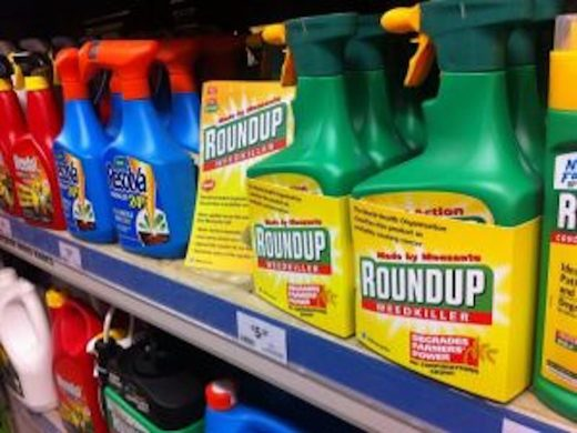 Monsanto's 'alternative facts' about glyphosate are on trial