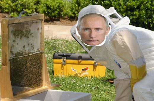 90s TV show warned about Russia harnessing the power of bees, but no one listened