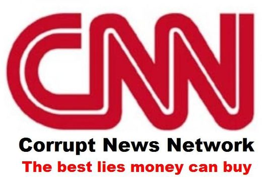 Image result for cnn fake