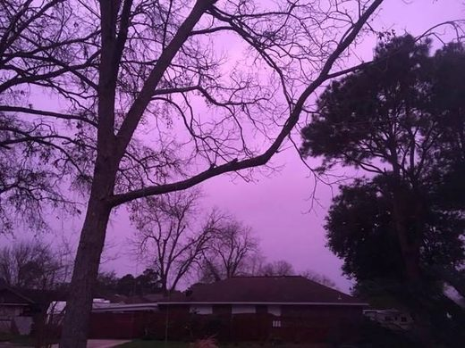 purple sky houston
