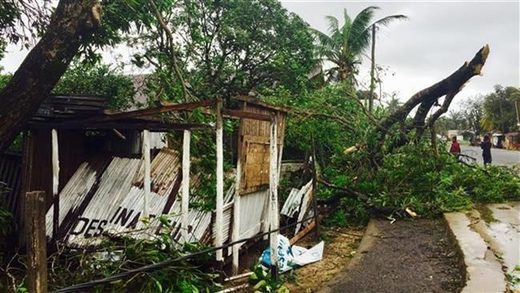 small building damaged by a tree in a street in Sambava, Madagascar, on March 8, 2017.