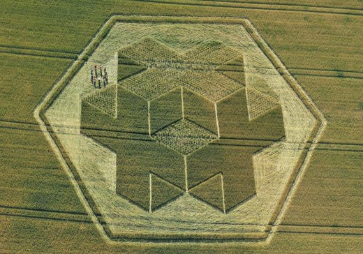 'Beyond our knowledge'? Scientist claims crop circles are hidden messages left by aliens or human time travelers