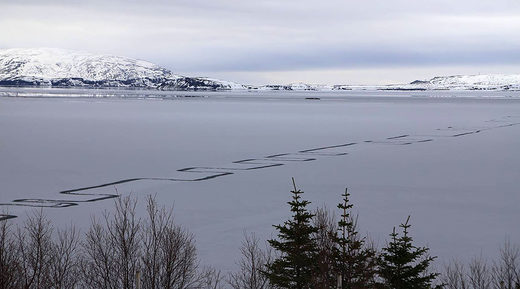 Weird geometric pattern etched into Iceland's largest lake baffles locals