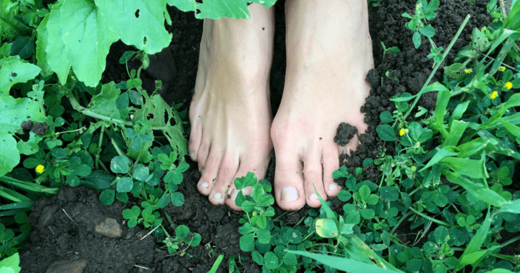feet in soil