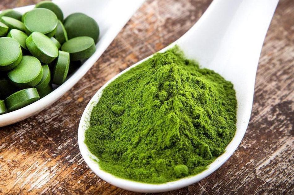 Algae chlorella